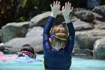 Wills diving technique